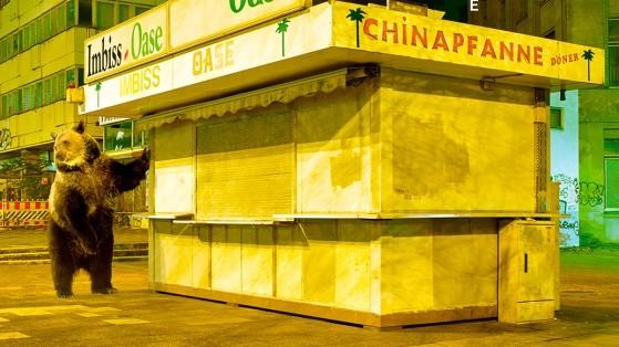 Berlinale 2018 – Tage 4 und 5: Mit Kim Ki-duk auf blutiger Fahrt